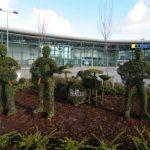 Ataque a escultura de arbusto de Los Beatles en Liverpool por declaraciones de Ringo