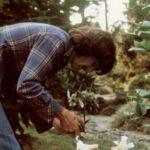 Se anuncia un bosque y una estatua para George Harrison en Liverpool